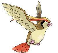 pokemon go Pidgeotto