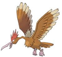 pokemon go Fearow