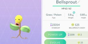 What is Pokemon Go  Pokemon Candy?