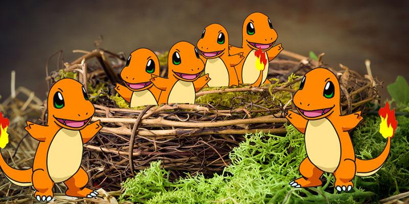 pokemon go nest