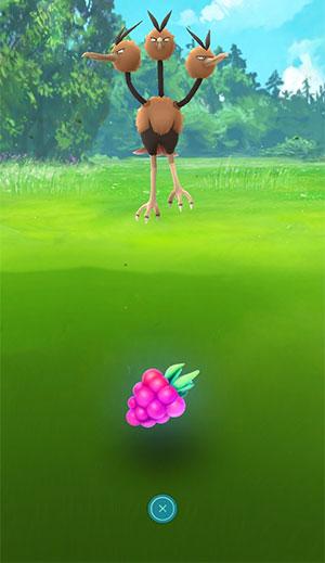 pokemon go razz berries