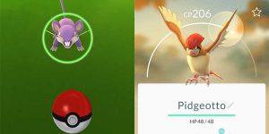 catch common pokemon in pokemon go