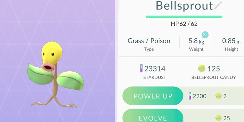 pokemon go candies